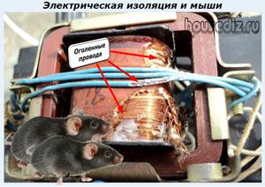 Электрическая изоляция и мыши
