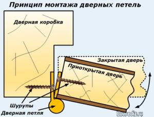Принцип монтажа дверных петель