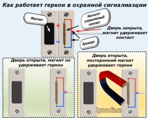 Как работает геркон в охранной сигналиазции