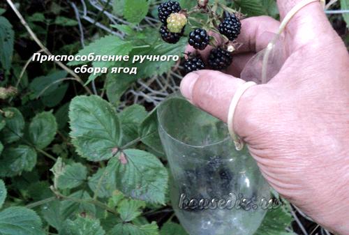 Приспособление ручного сбора ягод